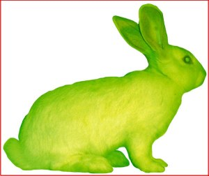 neon-rabbit