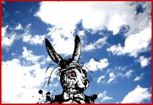 rabbit-in-sky